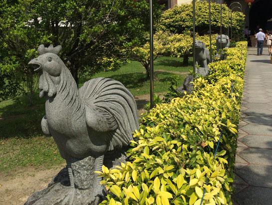 saraherhodes-rooster